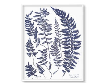 Botanical Art, Contemporary Wall Art, Fern Art, Fern Print, Instant Download, Printable Art, Art Prints, Wall decor, Wall Art, Poster, Art