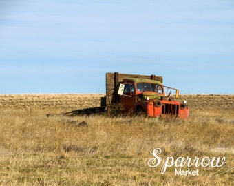 Grassland, Abandoned Truck, Old Truck, Old Pickup, Red Farm Truck