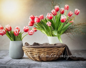 Digital backdrop for newborns, Still life tulips (2 versions)