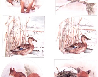 A4 - winter animals collage sheet 2