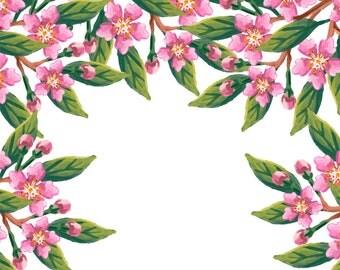Cheery Blossom Flower Frame Watercolour Digital Clip Art High Resolution F73