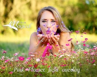 Digital Flower Overlay | Flower Overlay | Photo Overlay | Photography Overlay | Digital Pink Flowers | Flower Field | Flowers | Photoshop