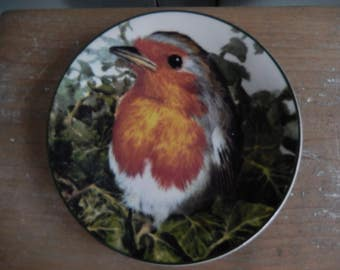 Adorable Robin Wall Plate, Robin Redbreast, Bird Plate, Wall Hanging, Retro Robin, Plate