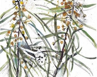 Wattle Blossom, Nature Painting, Yellow Watercolor Print, Botanical, Acacia, Nature Art Print, Nature Green Yellow Wall Decor, Ink Drawing