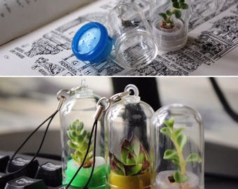Pet-Plant Charm