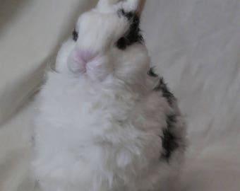 Custom Needle Felted Netherland Dwarf Rabbit