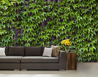 leaf wallpaper, leaves wall mural, green wallpaper, green leaf wall mural, self-adhesive , pine wall mural, vinly wall mural, wall decal