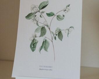 Snowberry painting - digital print