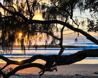 beach photography, beach, beach photo, waves, beach print, photo, fine art, pelican, seashore, sunrise, beach wall art, beach house, ocean