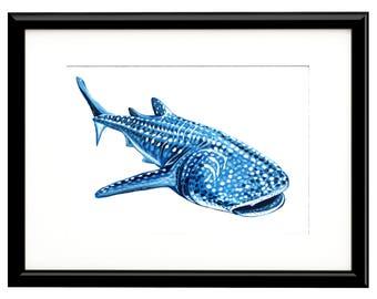 "Whale Shark, Fine Art Print, 10""x8"""
