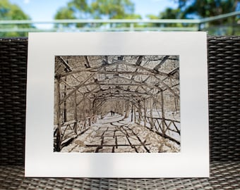 "New York, Central Park, Photography, 16x20"" matted print, wall art, matted photo, 11x14 print, Central Park Photo, New York Print"