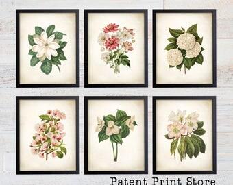 Wendel Botanical Print Set. Botanical Print. Art Print. Wall Art. Botanical Poster. Floral Prints. Antique Botanical Prints. Dining Room Art