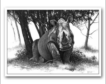 White Rhino Limited Edition fine art wildlife print. A detailed photo-realistic pencil drawing, signed and numbered. Black and white picture