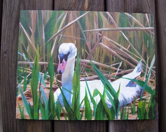 Hidden Nest - White Swan Sitting in Nest- Among Reeds -Acrylic Painting