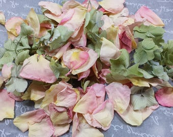 100% Real Freeze Dried Pink Rose and Green Hydrangea Petals (5 cups)