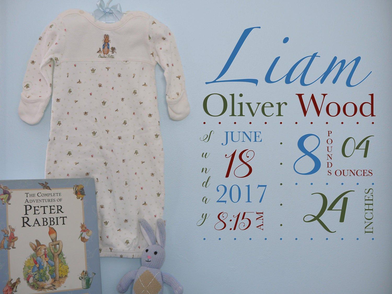 Personalized Baby Wall Art, Baby Stats, Peter Rabbit Wall Art ...