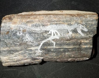 The Little Dinosaur Fossil