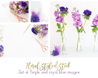 Rose gold with royal blue anamones and purple hyacinths styled desktop bundle of 5 images