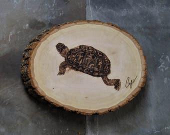 Wood-Burning: Climbing Box Turtle
