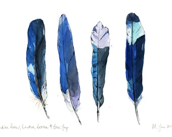 Feather Modern Watercolour Fine Art Giclée Print, A3, A4, Blue Feathers Bird British