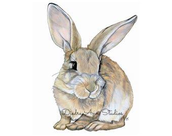 Bunny Rabbit Nursery Fine Art Print - SKUWC100