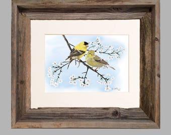 Goldfinch-Cherry Blossom- Framed- Barnwood