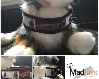 Collar for the dog collar for the dog