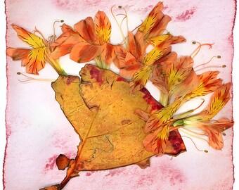 Grape leaf and flowers on Wood Panel