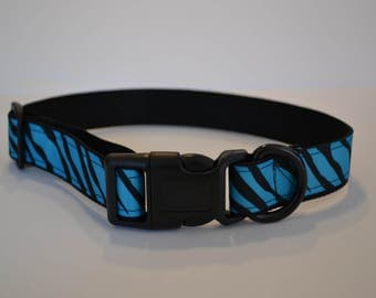 """Black and Blue dog collar  (M-XL) 1"""" wide"""