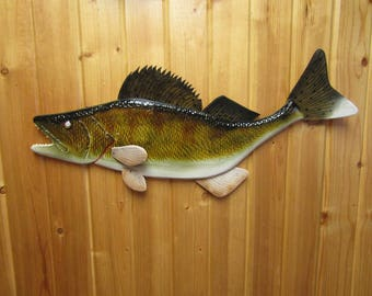 27'' tail up Walleye