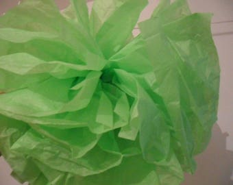 3 PomPoms in the green paper of 20/30 and 40 cm to 4.80 euros.