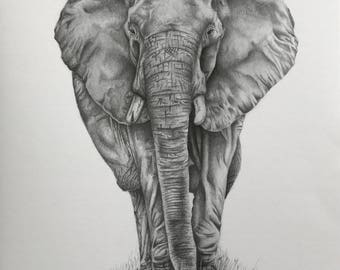 Realistic African elephant print in black and white, limited edition, hipster, boho home decor