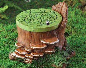 Fairy garden Fiddlehead fairy hatch