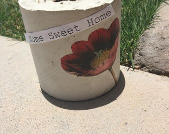 Vintage poppy concrete planter
