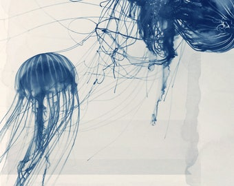Nature Photography - Animal Art - Ocean Art - Sealife- Jelly Fish- Fine Art Photo - Deep Blue Sea #2 - Jellyfish - Home Decor - Wall Art