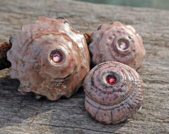 Handmade RAKU Seashell Set of Three Buttons