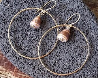Hoop Earrings, Shell Hoop Earrings, Beach Hoop Earrings, Hawaii Jewelry, Cone Shell Hoop Earrings, Gold Hoops, Hawaii Earrings, Beachy Boho