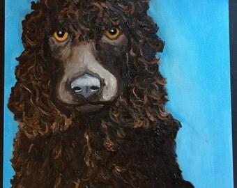Boykin Dog Portrait Original Painting Daily Painting