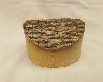 Ash Wood Natural Edge Turning Bowl Blank