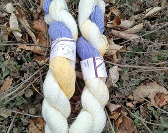 Lorna's Laces hand dyed sock yarn in Layette