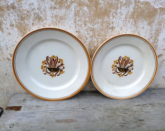 Antique old French 1900/1930  Creil Monterau /Les Oeuillets  art deco pattern /coutryside /shabby chic/Set of 2 big round dish plate