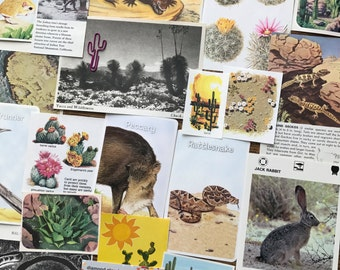In The Desert Mini Vintage Nature Collage, Scrapbook and Planner Kit Number 2351