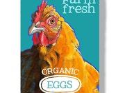 Chicken metal sign 8x12 fresh eggs farm sign wall decor indoor outdoor