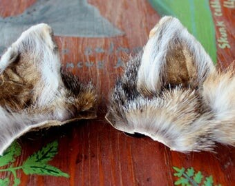 Fox ears headdress - real eco-friendly clip-on gray fox fur ears costume for totemic ritual and dance, cosplay, and more