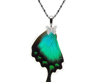 REAL BUTTERFLY WING Necklace (Papilio Lorquinianus Hindwing - N018)