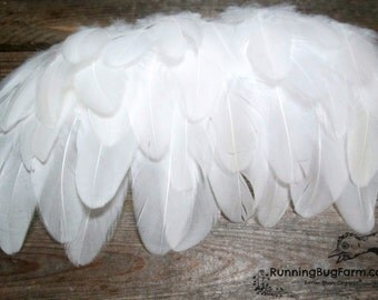 "30 White Feathers Wing Feather Real Small White Wyandotte Rooster Feathers Natural Eco Cruelty Free Bird Feathers For Crafts 1.5-2.5"" / WW9"