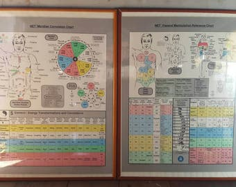 Vintage Framed Visceral Manipulation Chart and Meridian Chart Set