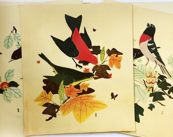 Set of 3 Vintage Decorative Bird Prints 1953 I. B. Fischer Co Woodland Cabin Decor Sparrows Nature MCM 50s Country Collage