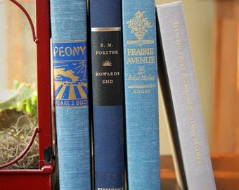 Curated set of four hardback books for display - blues