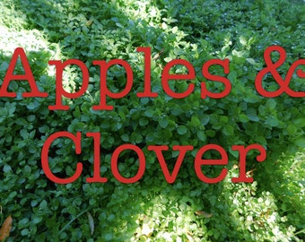 Apples & Clover soy candle